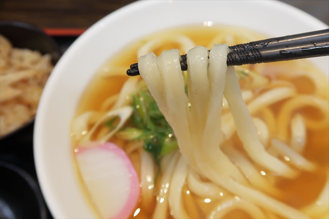 19105-極楽うどんAh-麺-01-S