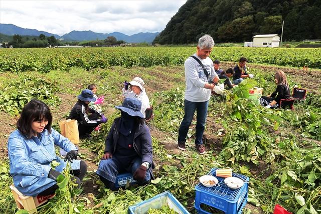 191020-黒豆収穫祭-04-S