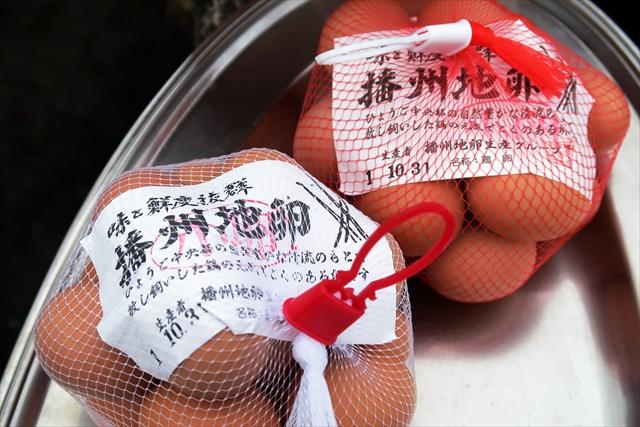 191020-黒豆収穫祭-17-S