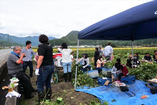 191020-黒豆収穫祭-19-S