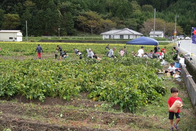 191020-黒豆収穫祭-23-S