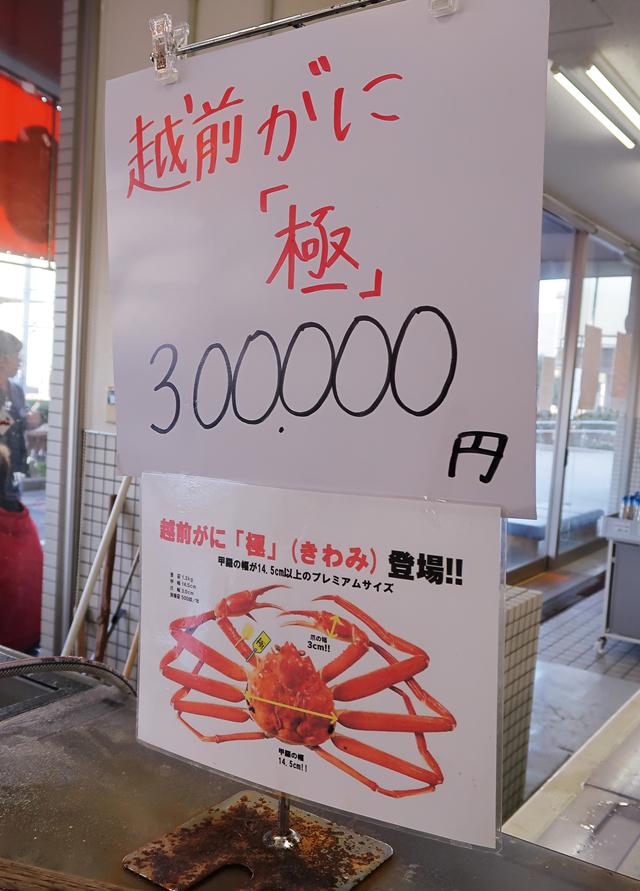191110-道の駅越前-014-S