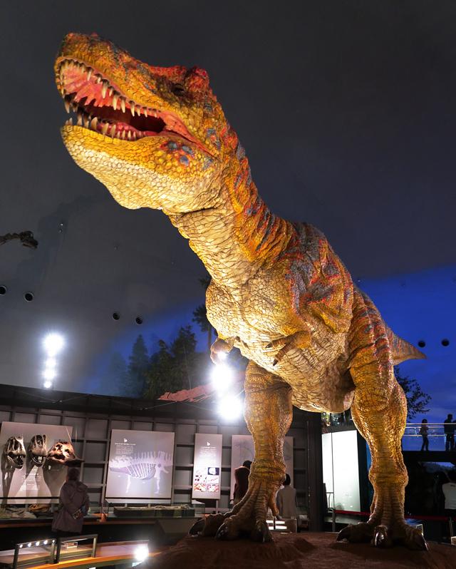 191110-恐竜博物館-001-S