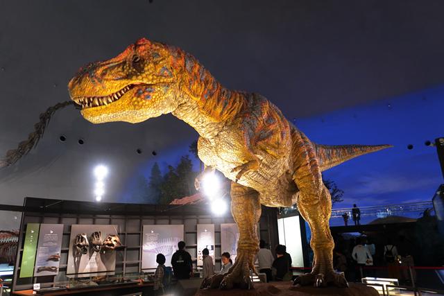 191110-恐竜博物館-006-S