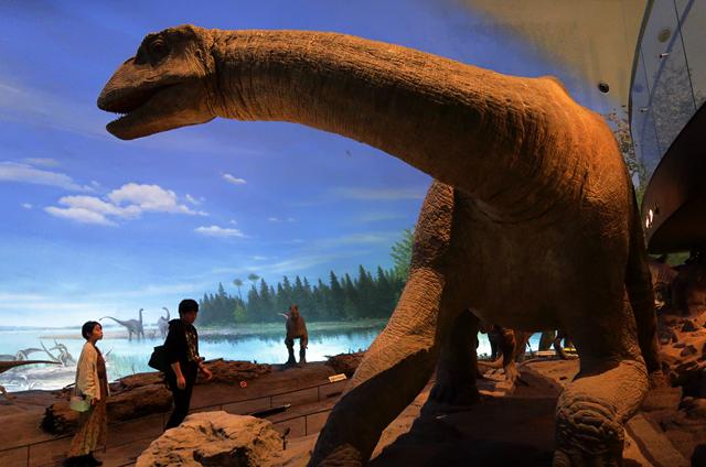 191110-恐竜博物館-008-S