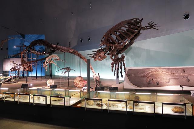191110-恐竜博物館-011-S