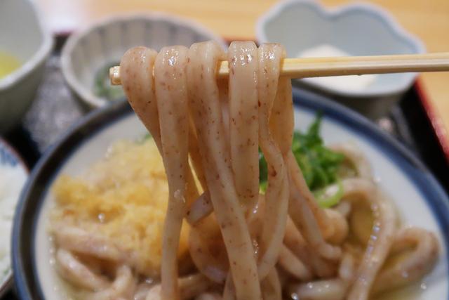 200207-うどん讃く-011-S