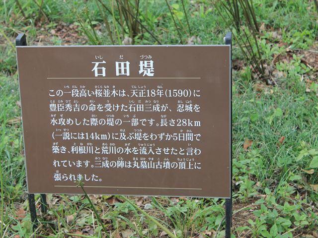丸墓IMG_4942