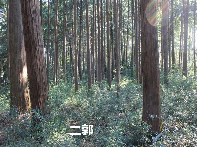 勝沼2IMG_5107