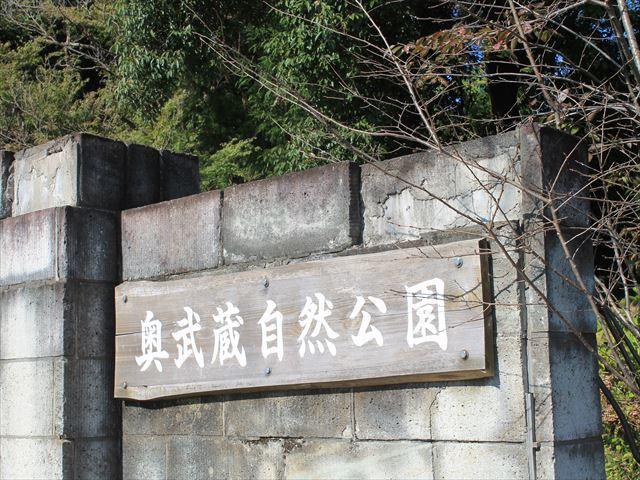 天覧山IMG_5160