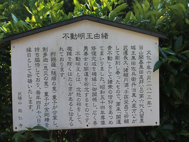 天覧山IMG_5144