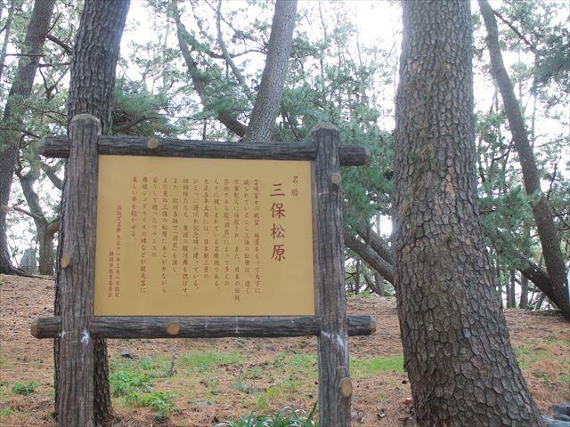 三保松原IMG_5758