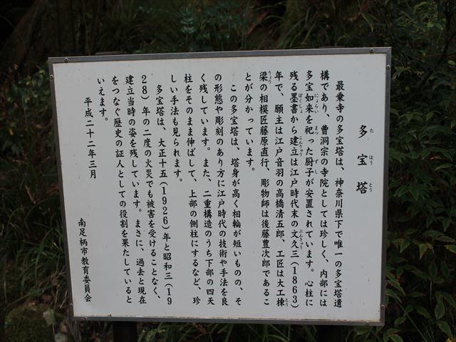 大雄山IMG_5809
