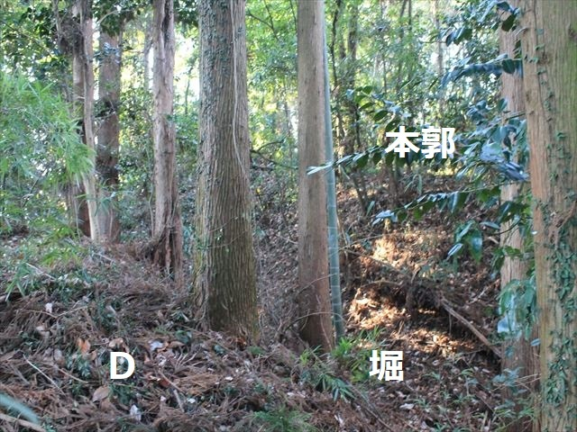 乙畑IMG_5863