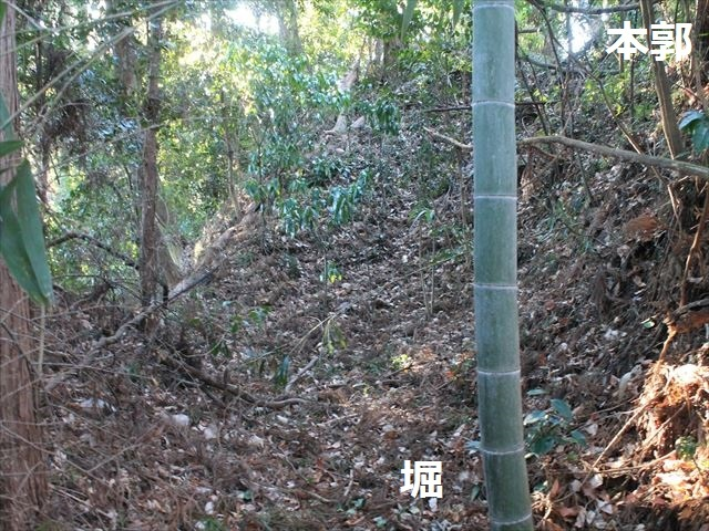 乙畑IMG_5865