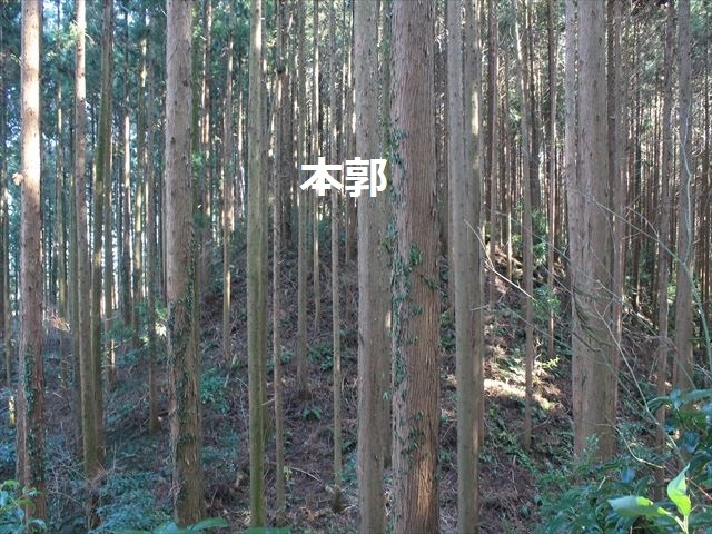 沢村①IMG_6059