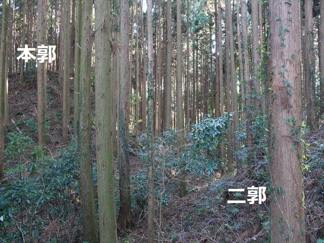 沢村①IMG_6062