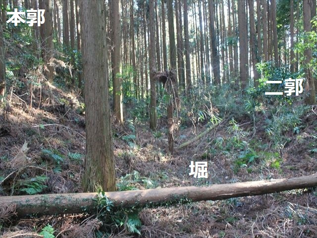 沢村①IMG_6065