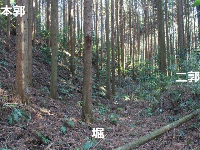 沢村②IMG_6066