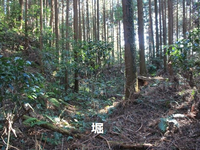 沢村②IMG_6068