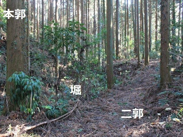 沢村②IMG_6070