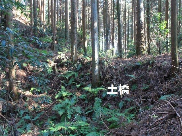 沢村②IMG_6071