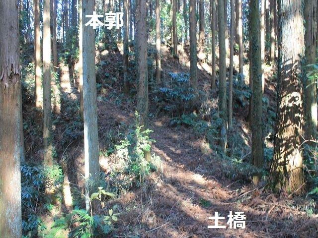 沢村②IMG_6072