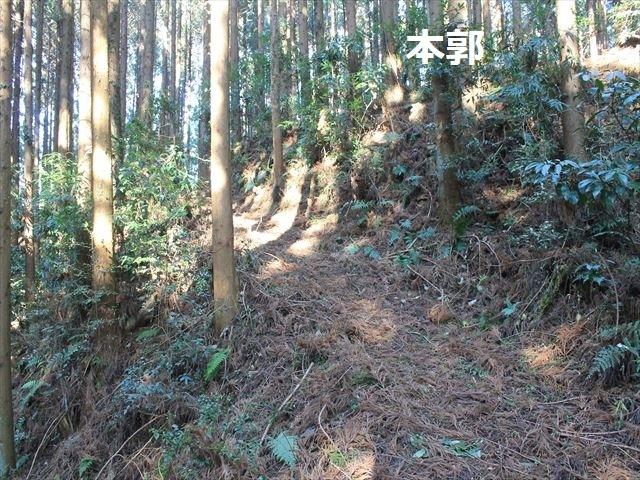 沢村②IMG_6074