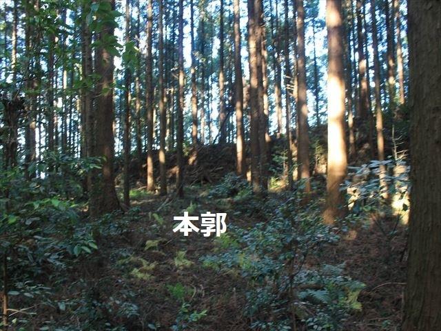 沢村②IMG_6078
