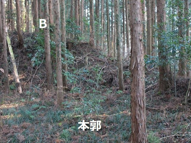沢村②IMG_6085