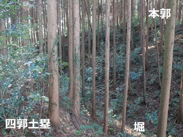 沢村②IMG_6093