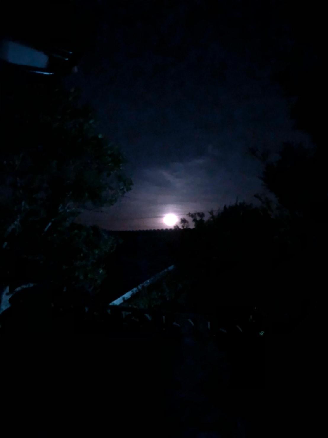 月が見放題