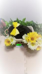 vlcsnap-2020-05-05-20h23m22s330 (2)