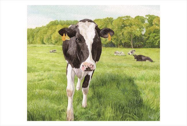 ポストカード原稿 牛と緑j_R