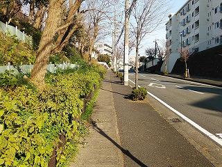 miyamaedaira1-7-4.jpg