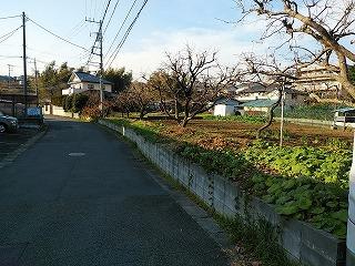 miyazakidaieki2-16.jpg