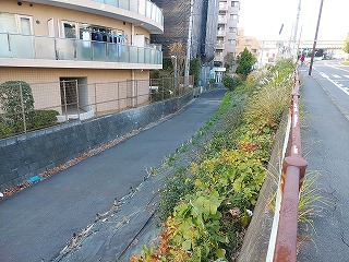 miyazakidaieki5-3.jpg