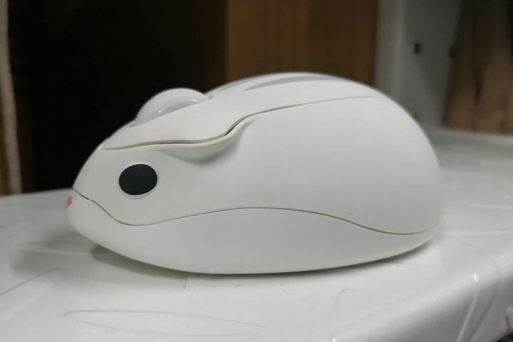 Akko_Hamster_Mouse_YOKI_04.jpg