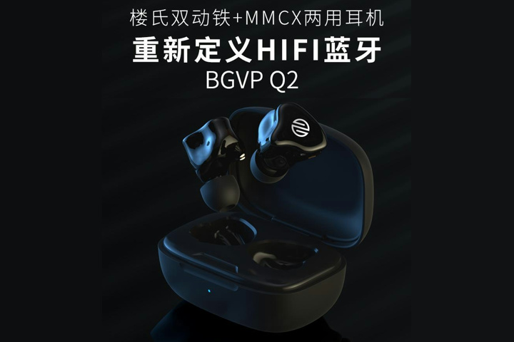 BGVP_Q2_01.jpg