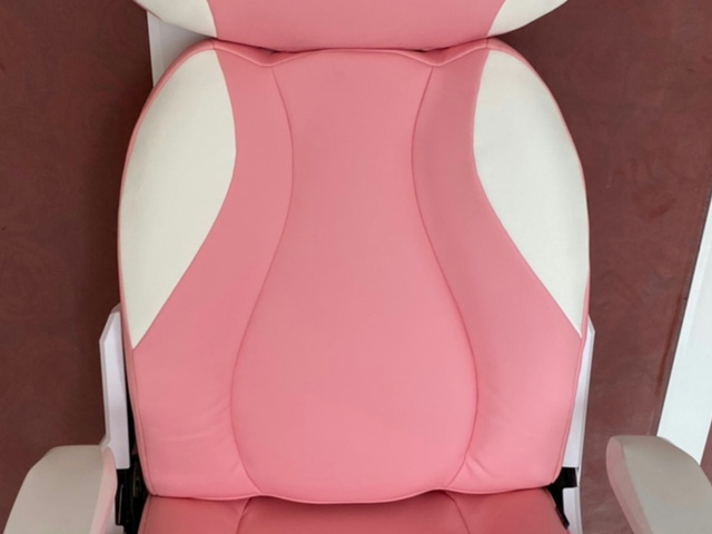 DXRACER_Cat_Chair_04.jpg