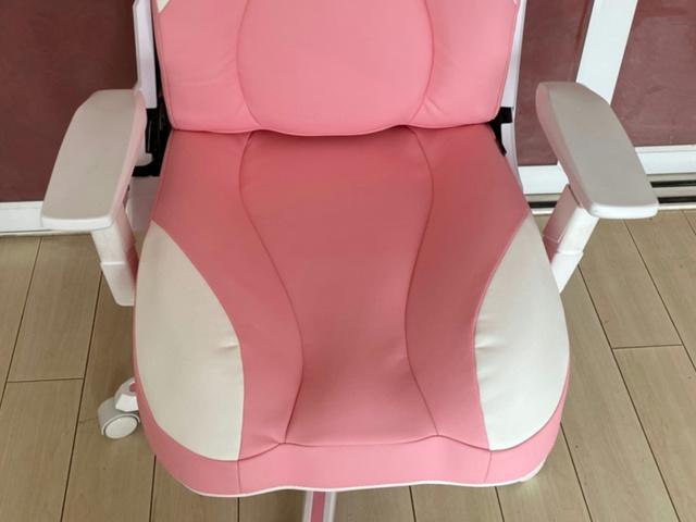DXRACER_Cat_Chair_05.jpg