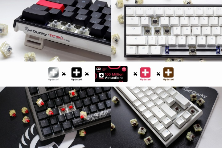 Ducky_New_Cherry_MX_Switches_01.jpg