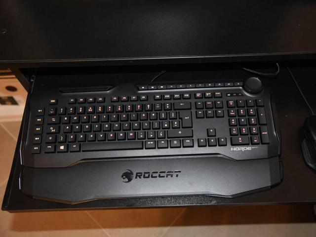 ROCCAT_Horde_AIMO_32.jpg