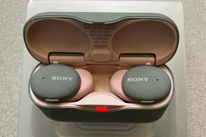 Sony_WF-H800_10.jpg