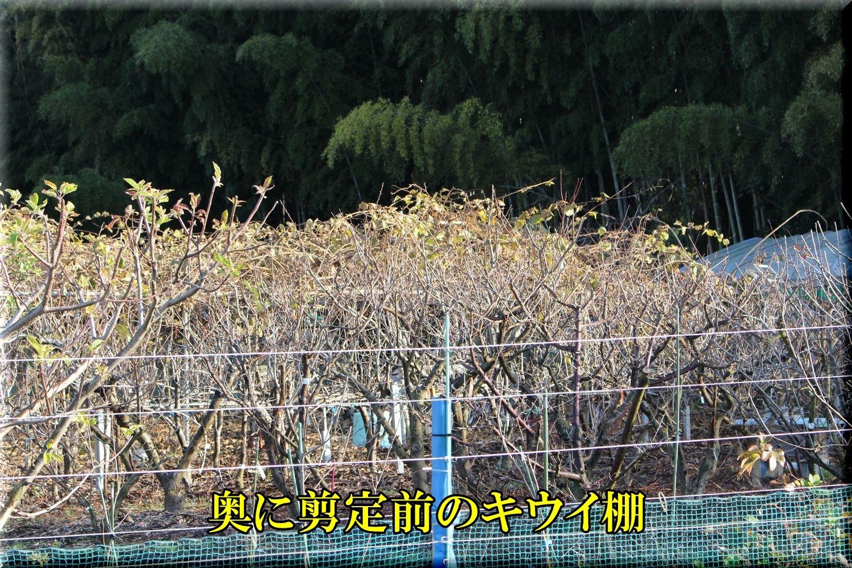 1before200103_004.jpg