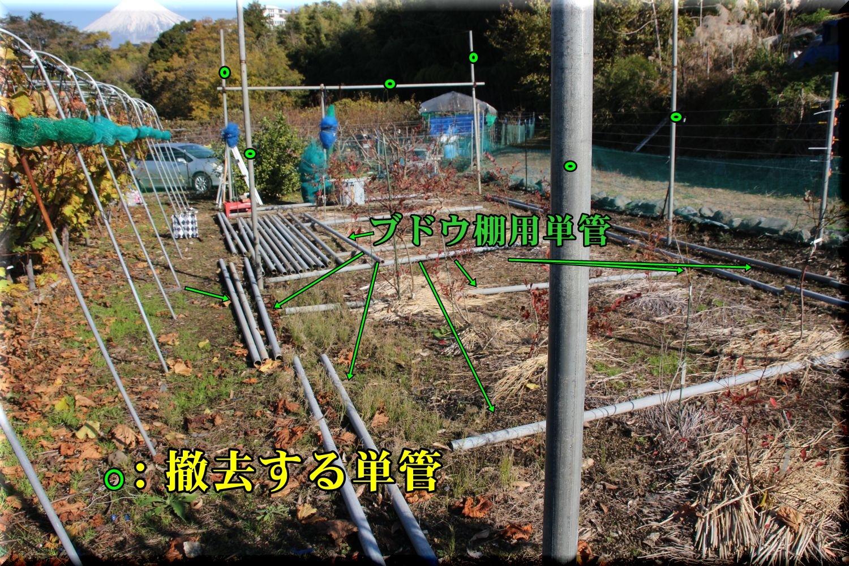 1budoudana191212_003.jpg