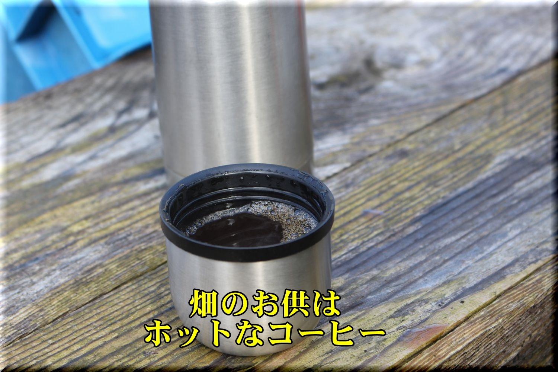 1cafee191224_001.jpg