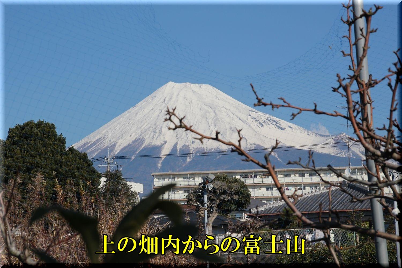 1fujisan200113_016.jpg