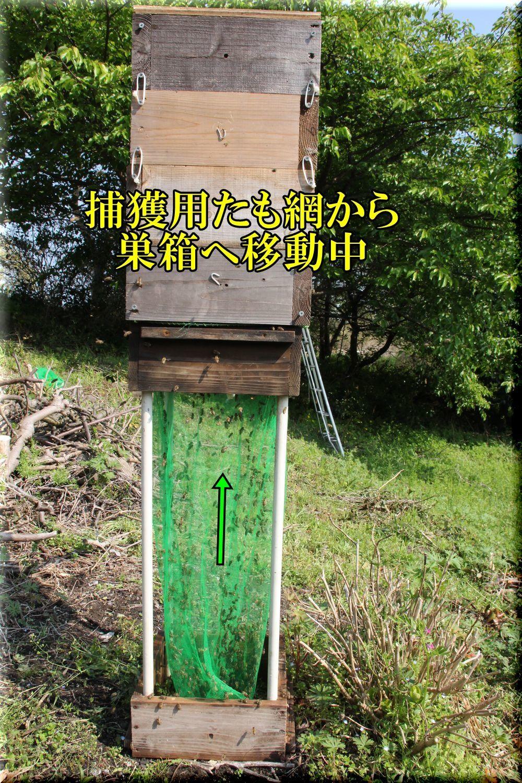 1hokaku200404_011.jpg