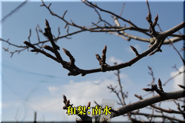 1nansui200303_005.jpg